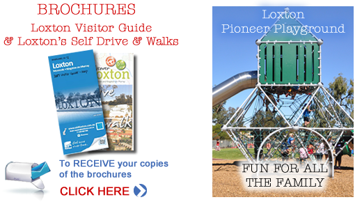 Loxton Visitor Guide
